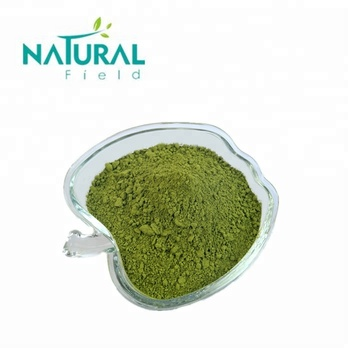 Great Stock Competitive Price Dried Moringa Leaf Powder