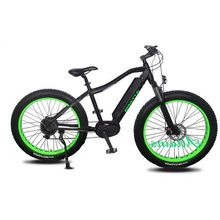 Wholesale china supplier giant electric bike