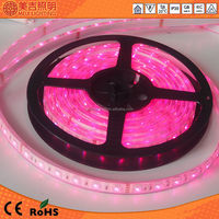 China high quality flexible and waterproof 5050 addressable rgb led strip