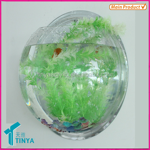 Acrylic Wall Mount Fish Bowl, Mini Plexiglass Fish Tank