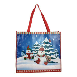 Hot sale Printing Gift Promotion Non Woven Shopping Christmas Bag