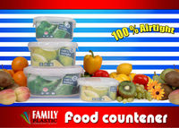 Family food container