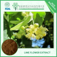 100% Natural Flower Of Miquel Linden Extract 4:1 tilia flowers extract