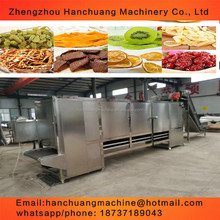 Continuous tunnel type microwave beef dehydration and drying machine