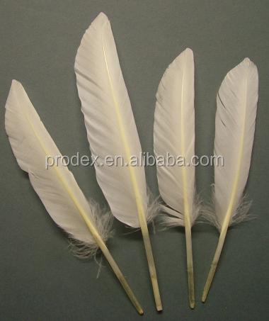 Dyed duck feather Pheasant Feather dot feathers for sales