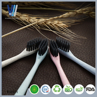 Wholesale Wheat Straw Plastic Eco Friendly
