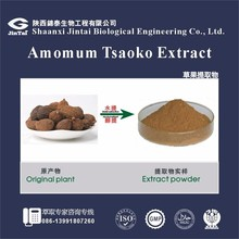 Amomum Tsaoko/Amomum tsao-ko Extract 10:1 20:1 powder wholesale