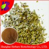 Manufacturer Supply Paraguay Tea plant extract/Yerba Mate Extract