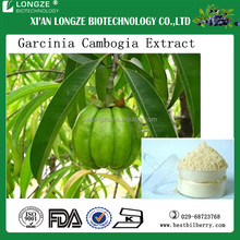 Chinese herbal Garcinia cambogia extract with low price for wholesale 100% natural