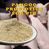compound probiotics for poultry and pig growing healthier