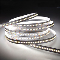 Hot Selling 12v 24v LED Rope