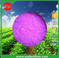 rose effect good fertilizer of npk 15-36-15+te