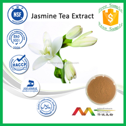NSF-GMP Wholesale Best Price Herbal Extract Jasmine Green Tea Extract