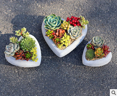 Set Of 3 Heart Shaped grey concrete Mini Flower Planter Pots