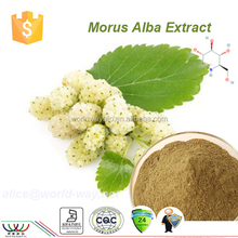 white mulberry leaf extract powder dnj