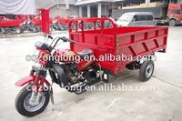 2013 New Gas Hot Seller 250CC Cargo Tricycle
