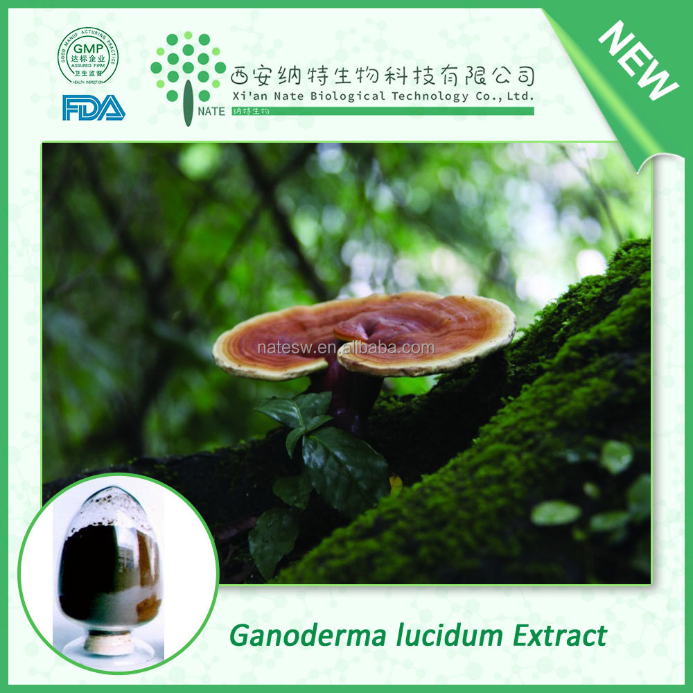 Raw Material Anti cancer natural Ganoderma lucidum Extract Reishi Mushroom Extract Polysaccharides 30% 50%