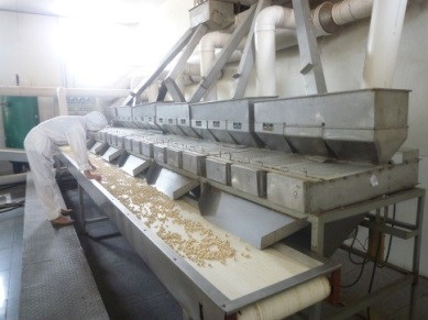 Nuts and Kernels -- Stripping