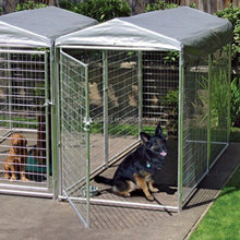 stainless steel and galvanization metal dog kennels