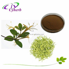Factory supply& hot selling honeysuckle extract 10%- 98% pure chlorogenic acid with free sample