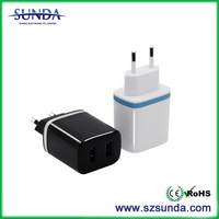Popular 5v 2a battery wall charger for phone case hot sale in Europe