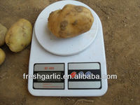 Export of fresh frozen potato to DuBai