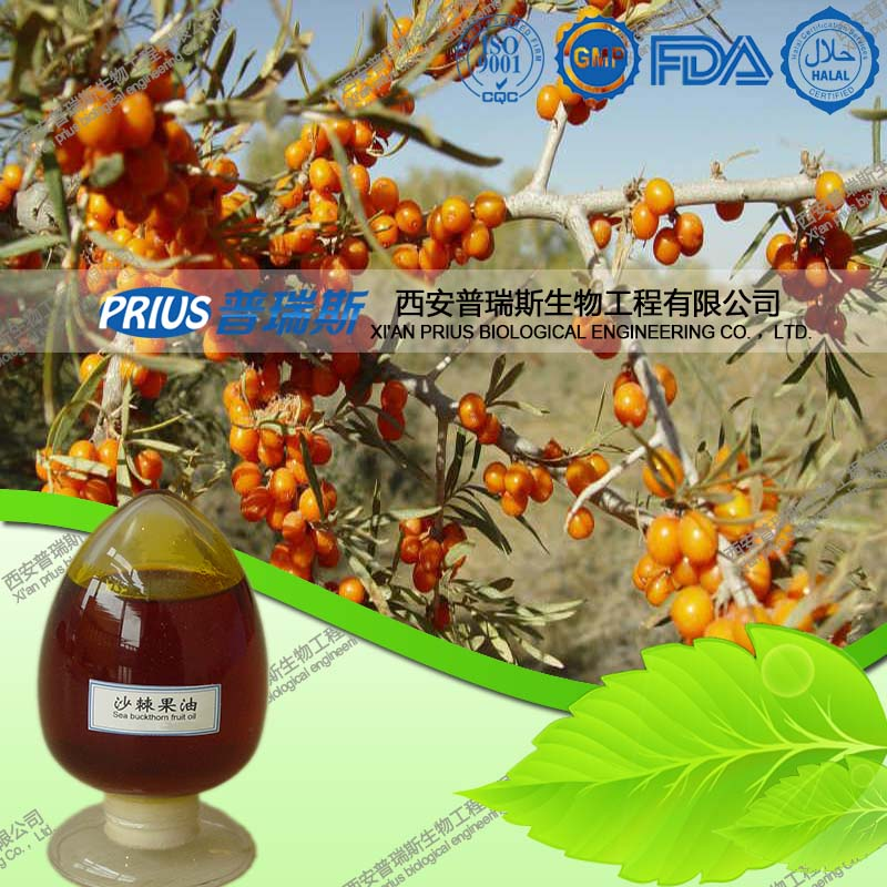 Factory supply high quality seabuckthorn fruit oil