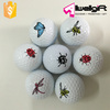 Professional Practice Golf Balls custom logo printing two-piece golf ball