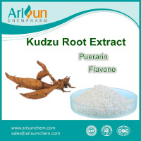 Kudzu Root Extract Powder 60%/Kudzu Root Extract 60%
