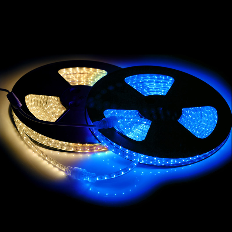 AC 110V 10M 600leds 3528 60led/m PVC Cover Flexible LED Strip Light Waterproof IP67 Blue/Warm White for Christmas Party