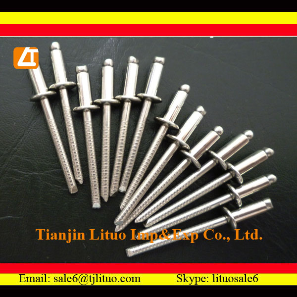 High quality good price paper rivet