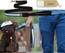 2016 new arrival solar energy and with USB rechargeable led dog leash