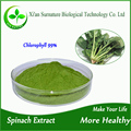 GMP high quality bulk organic spinach extract