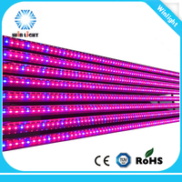2016 China 1200mm 4ft T8 Blue/red Led Plant Grow Light Tube