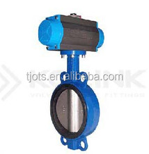 DN250 Lug Type Butterfly Valves (Half Shaft Without Pin)