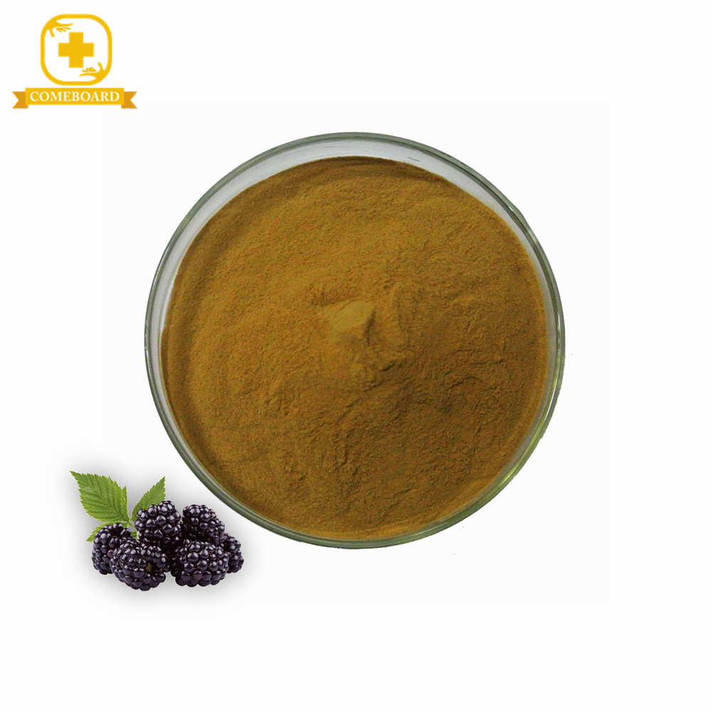 KOSHER Mulberry fruit powder extract with best price