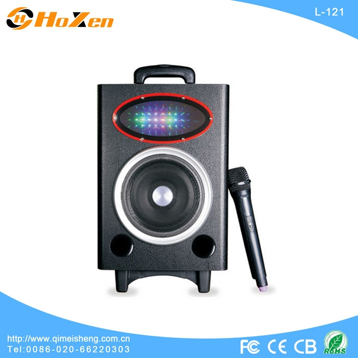 mini bluetooth speaker with fm radio,voic speaker 24v