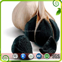 ISO Supply black garlic extract powder ,black garlic extract Wholesale High Quality