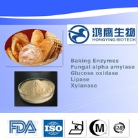 2016 Hot Sale Food Grade Enzyme