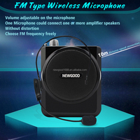 NEWGOOD professional wireless headset microphone for teachers,meeting and tour guide