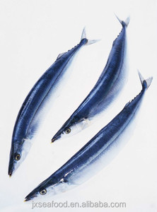 Seafood Frozen Pacific Saury Fish