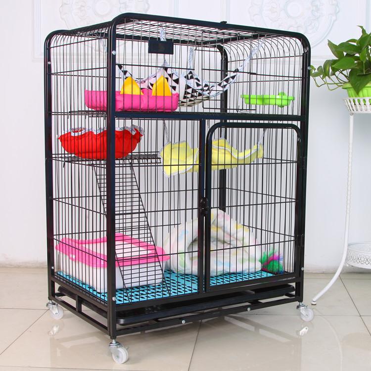 Animais de pequeno porte humanos frentes de gaiola ferret gato de estimação para venda