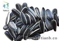 2015 Chinese sunflower seeds price 5009