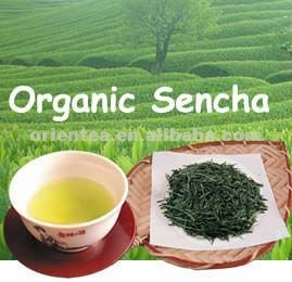 Japanese flavor steamed green tea organic chinese green tea sencha