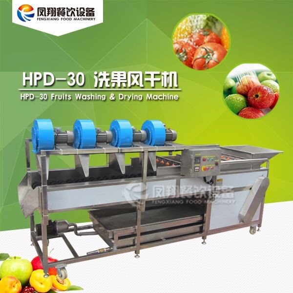 HPD-30 Fruit washing and drying processing line