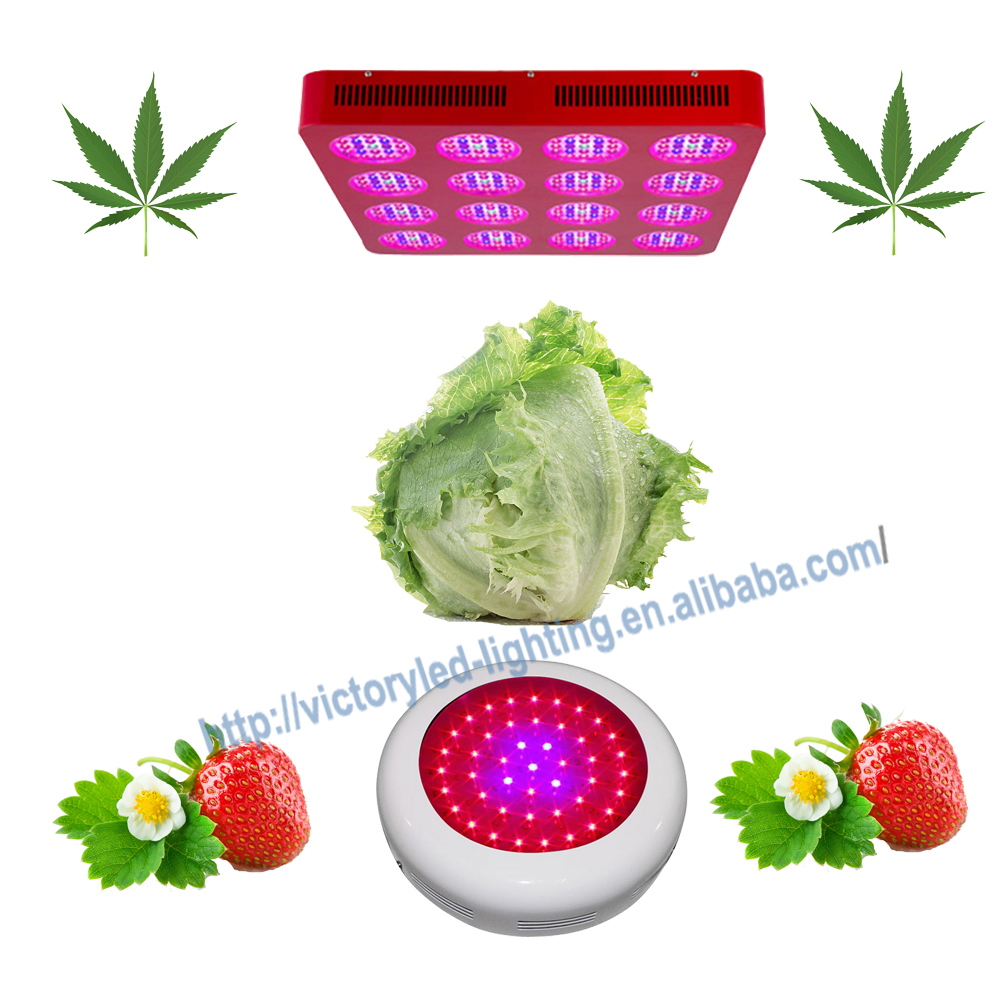 CE RoHS standerd 450W Full spectrum led grow light low power consumption