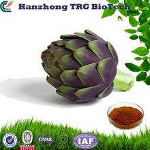 factory direct natural organic artichoke with high quality