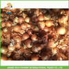 /product-detail/wholesale-chinese-onion-trading-company-red-onion-60368578089.html