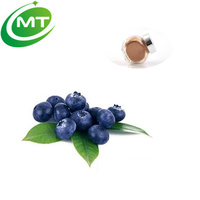 Natural anthocyanosides european bilberry extract/Vaccinium myrtillus L.
