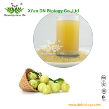 plant extract Phyllanthus Emblica Extract/Alma berry P.E./Indian Gooseberry powder